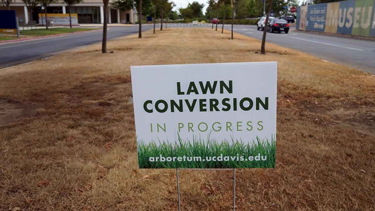 Photo of lawn conversion sign.