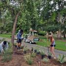 Photo of Learning by Leading interns converting a campus landscape.