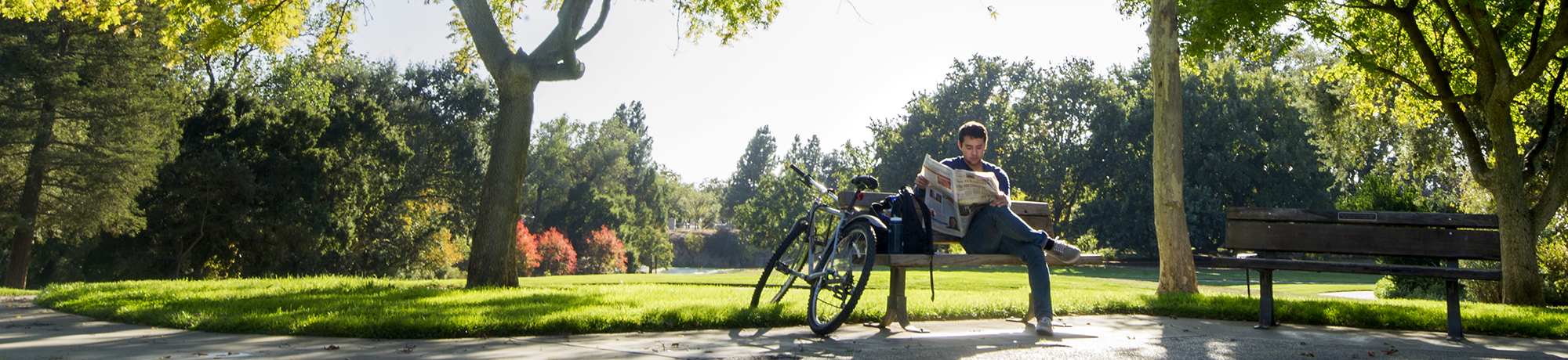 young man reading the paper in the uc davis arboretum